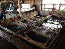 Fischhalle mit Hälterbecken